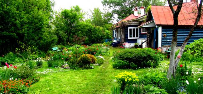 в саду дома Паустовского