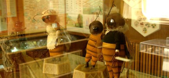 НИИ пчеловодства
