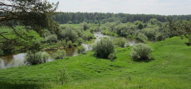 река Тьма в Князево